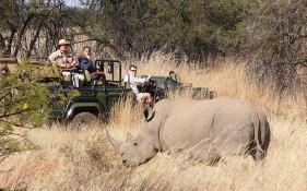 jembisa-rhino-made_2761988k